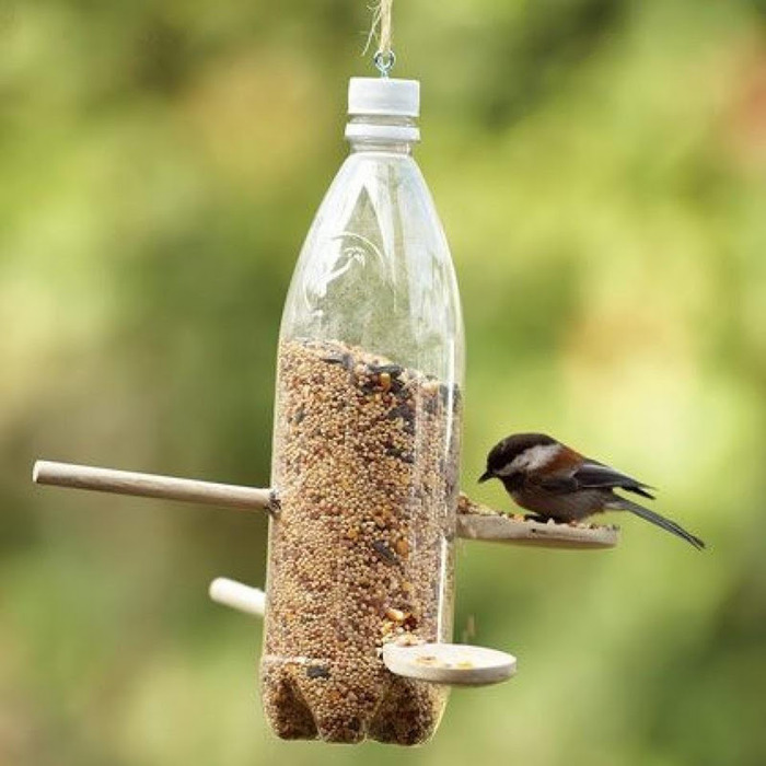 A clever soda bottle feeder with wooden spoons. - http://spoonful.com/crafts/backyard-bird-feeder